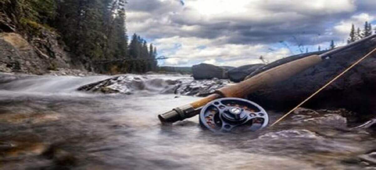 Top 10 Best Fly Reel in 2021 - Reviewed and Buying