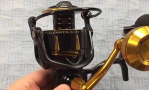 best saltwater fishing reel for the money