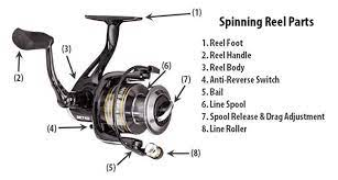 Essential parts of Spinning Reels